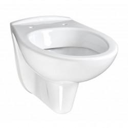 Vereg fali WC, mélyöblítésű
